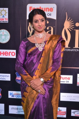 sanjjana hot in saree at iifa awards 2017 DSC_0601