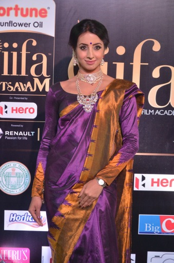 sanjjana hot in saree at iifa awards 2017 DSC_0609