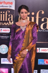 sanjjana hot in saree at iifa awards 2017 DSC_0611