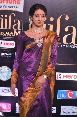 sanjjana hot in saree at iifa awards 2017 DSC_0615