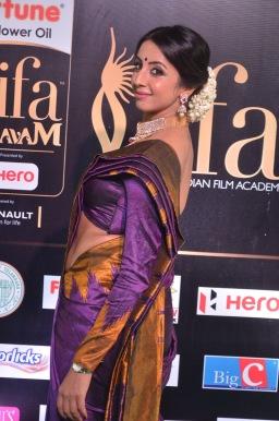 sanjjana hot in saree at iifa awards 2017 DSC_0621