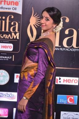 sanjjana hot in saree at iifa awards 2017 DSC_0623