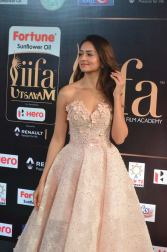 shanvi srivatsav hot at iifa awards 2017 DSC_17390790