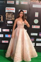 shanvi srivatsav hot at iifa awards 2017 DSC_17430794
