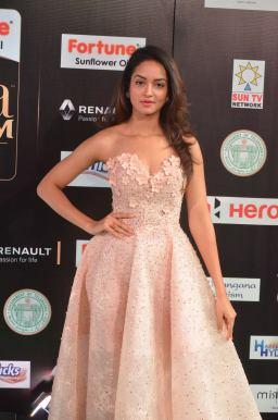 shanvi srivatsav hot at iifa awards 2017 DSC_17490800