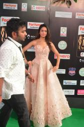 shanvi srivatsav hot at iifa awards 2017 DSC_17550806