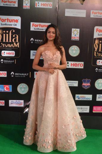shanvi srivatsav hot at iifa awards 2017 DSC_17630814