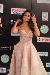 shanvi srivatsav hot at iifa awards 2017 DSC_17700821