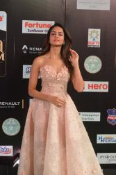 shanvi srivatsav hot at iifa awards 2017 DSC_17750826