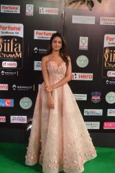 shanvi srivatsav hot at iifa awards 2017 DSC_17770828