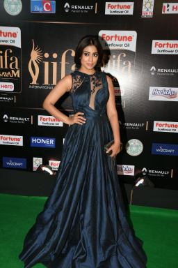 shriya saran hot at iifa awards 2017MGK_14480026