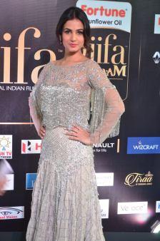 sonal chauhan hot at iifa awards 201734