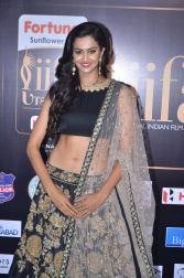subra ayyappa hot at iifa awards 2017DSC_62940008