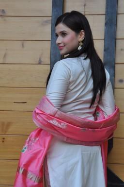 telugu actress mannara chopra hotDSC_0282