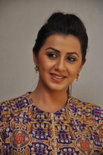 telugu actress nikki galrani hotDSC_0121