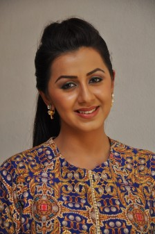 telugu actress nikki galrani hotDSC_0123