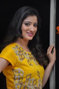 telugu actress richa panaiRicha Panai (4)