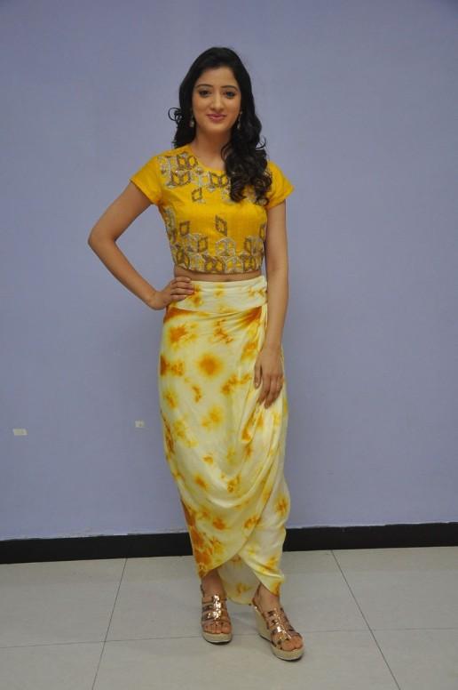 telugu actress richa panaiRicha Panai (52)