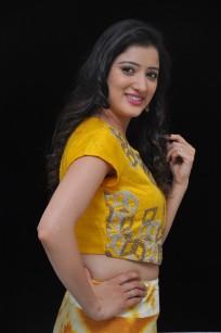 telugu actress richa panaiRicha Panai (7)