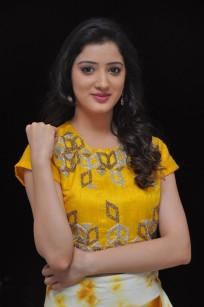 telugu actress richa panaiRicha Panai (9)