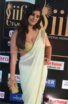 varalakshmi sarathkumar hot at iifa awards 2017DSC_82180044_wm