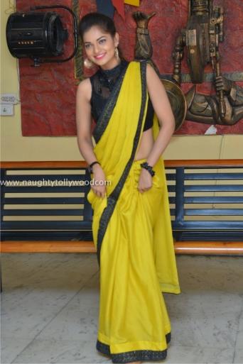 aswini hot in yellow saree 2017Aswini (156)_wm