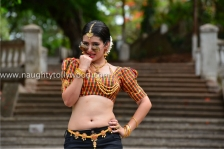 sena saha hot stills 2017 MKS_2918_wm