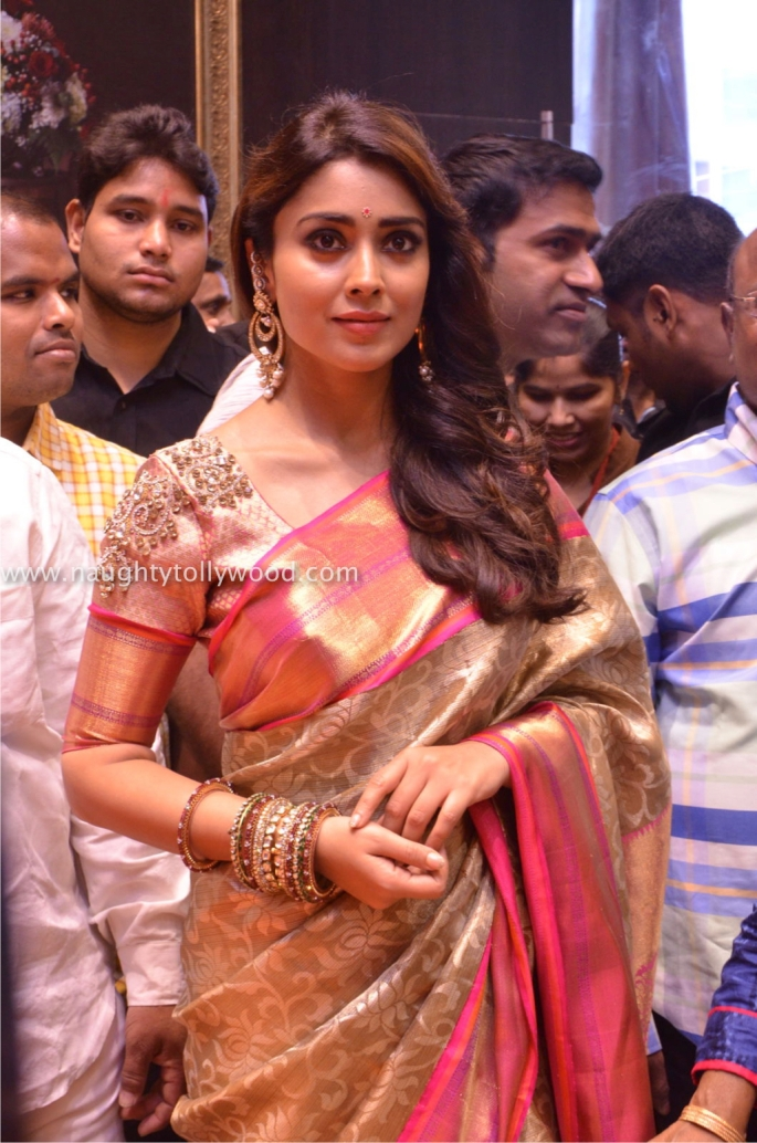 shriya saran hot in saree 201700001_wm