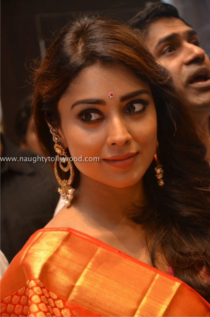 Shriya Saran Launches VRK Silks at Himayat Nagar (96)_wm